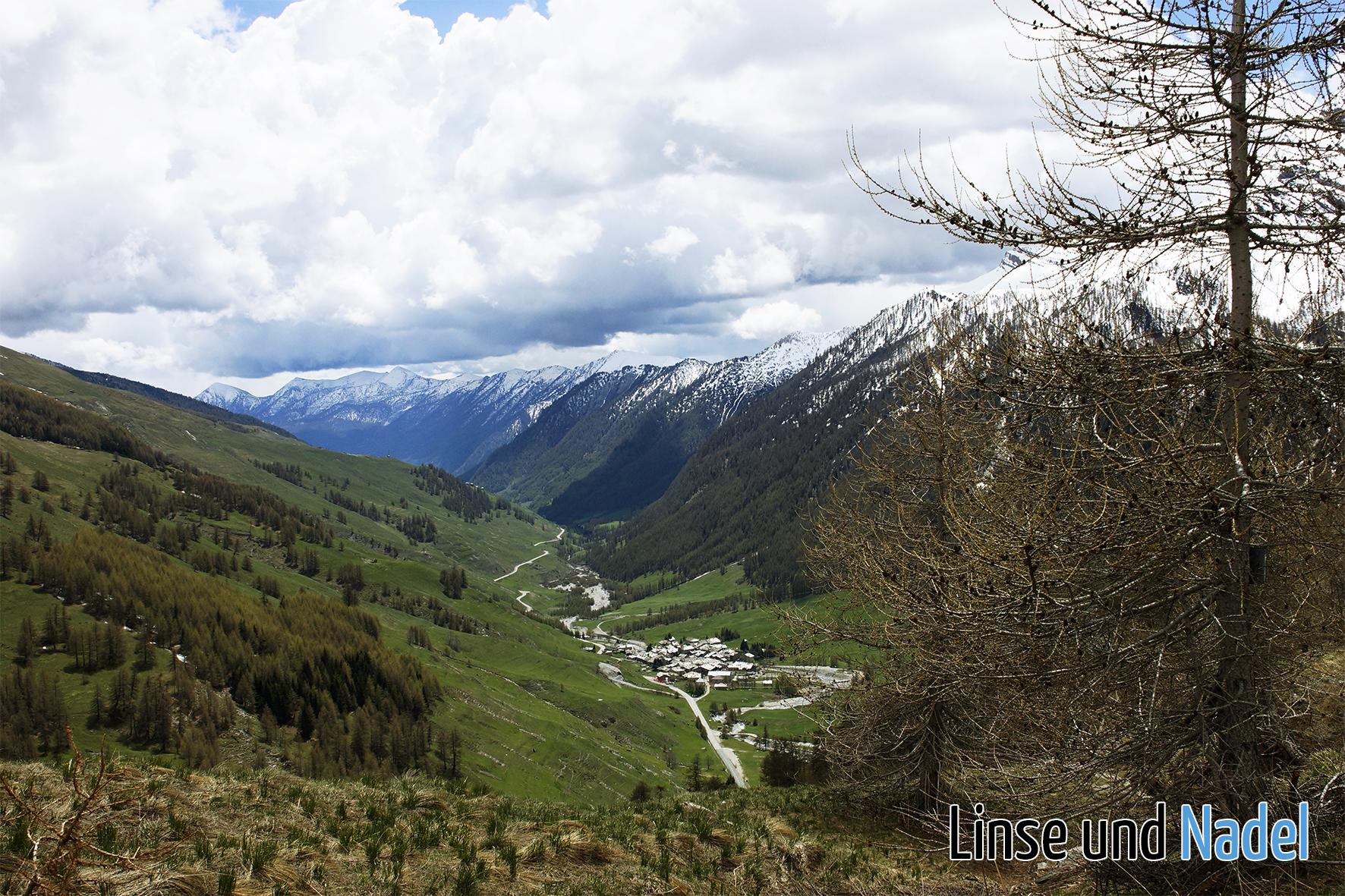 Piemont_130530_076_b